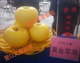 黄金苹果获苹果节金奖